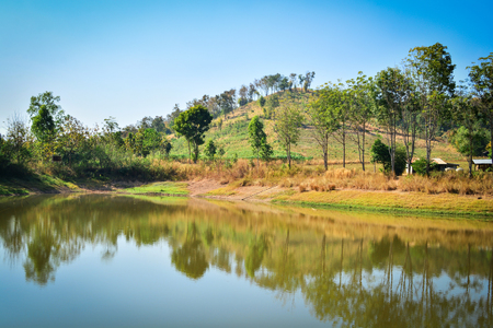 Pond on summer season forest with agricultural area and mountain background sunny day blue sky in countryside lake
