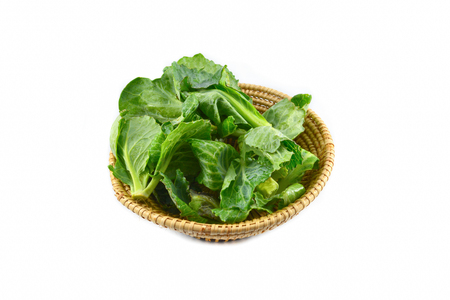 Fresh green leaves cabbage in the basket isolated on white background / Organic vegetable