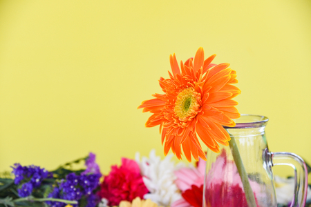 Orange gerbera daisy flower in glass jar on colorful flowers spring summer blooming beautiful on yellow background