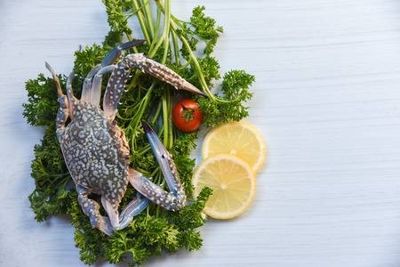 Fresh raw blue swimming crab seafood on curly parsley and lemon on white table background Stockfoto