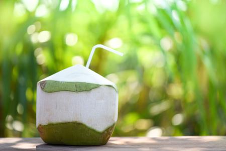 Bebida de jugo de coco fresco bebiendo / fruta de coco joven sobre fondo verde de naturaleza de verano Foto de archivo