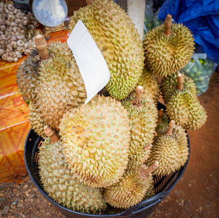Fresh durian fruit in the basket from the durian garden for sale in the local market thailand tropical fruit
