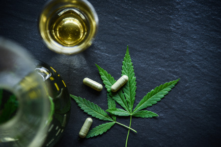 Marijuana leaf plant cannabis herbal tea and capsule on dark background  Hemp leaves for extract medical healthcare natural selective focus top view Stock Photo