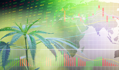 Business cannabis stock leaves marijuana success market price green profit growth charts graph money display screen up industry trend grow higher quickly