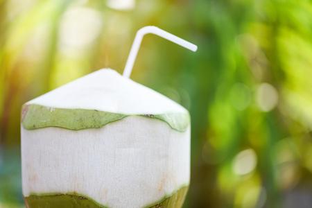 Frisches Kokossafttrinken / Junge Kokosnussfrucht auf grünem Hintergrund der Sommernatur Standard-Bild