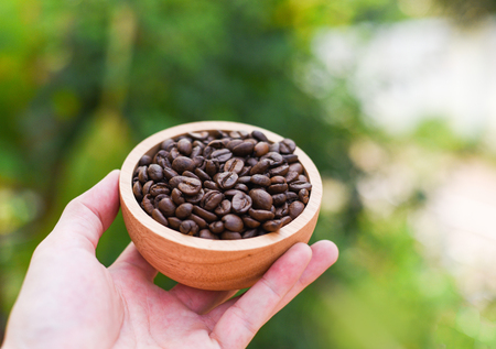 Coffee beans in wooden bowl on hand with nature green background 版權商用圖片