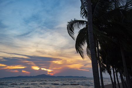 silhouette coconut palm tree sunset ocean on the tropical beach sea summer orange blue sky and mountain islands background