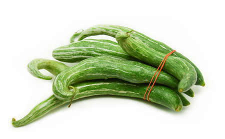 Snake gourd isolated on white background / Trichosanthes anguina