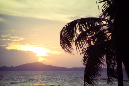 silhouette coconut palm tree sunset ocean on the tropical beach sea summer orange sky and islands mountain background Archivio Fotografico