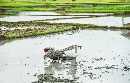 Walking Tractor on rice field for work plow farmland prepared for cultivation agricultural asian  Rice field planting in rainy season