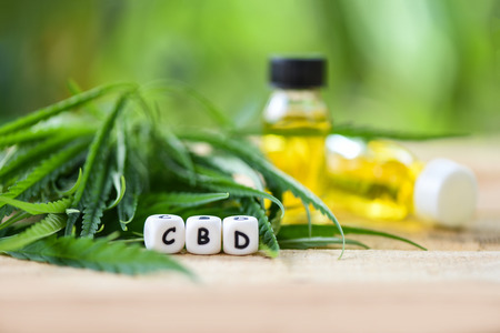 Cannabis oil on nature green background - CBD oil extract from cannabis leaf Marijuana leaves for Hemp medical healthcare natural selective focus