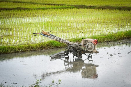 Walking Tractor on rice field for work plow farmland prepared for cultivation agricultural asian  Rice field planting in rainy season Reklamní fotografie