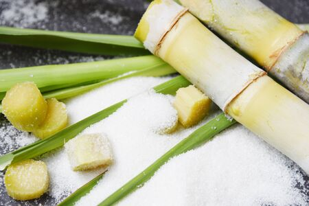 Sugar cane and white sugar on dark background 写真素材