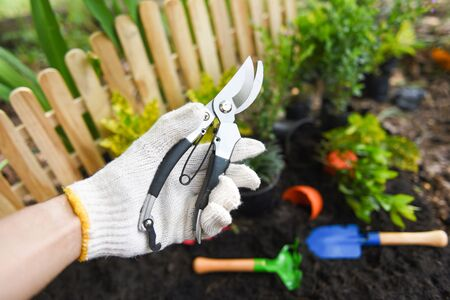 Hand holding pruning shears in the garden agriculture  Gardening tool and works concept 写真素材