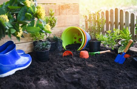Gardening tools on soil background ready to planting flowers and small plant in the spring garden works concept gardening flower pots in sunny at back yard 写真素材