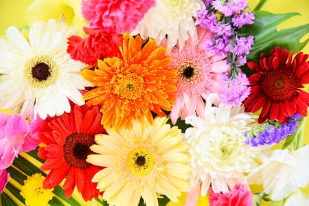Colorful flower background  bright and fresh spring flowers bunch gerbera chrysanthemum summer plant and green tropical leaf
