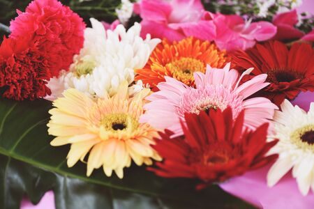 Colorful flower background  tone vintage fresh spring flowers bunch gerbera chrysanthemum summer plant and green tropical leaf 写真素材