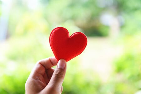 heart on hand for philanthropy concept / woman holding red heart in hands for valentines day or donate help give love warmth take care Stock Photo