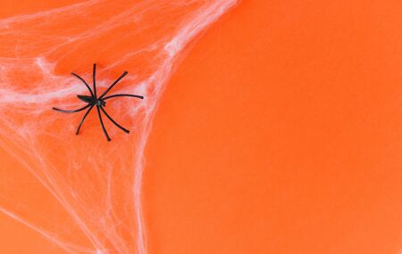 halloween background with spider web and black spider on orange decorations holidays festive for party accessories object concept