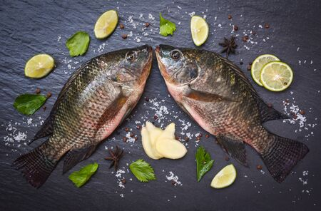 Tilapia fish freshwater and ginger lemon lime herb spices vegetable for cooking food in the asian restaurant / Fresh raw tilapia on black background