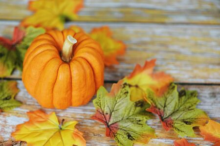 Thanksgiving background frame autumn leaf decoration festive on wooden  Autumn table setting with pumpkins holiday Imagens
