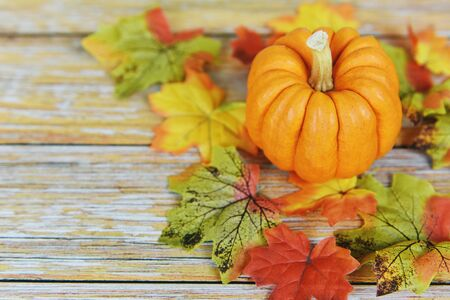 Autumn table setting with pumpkins holiday  Thanksgiving background frame autumn leaf decoration festive on wooden Stok Fotoğraf