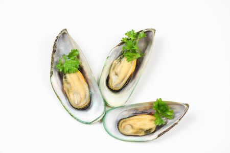 Green mussel shell with parsley  Mussels isolated on white background Imagens