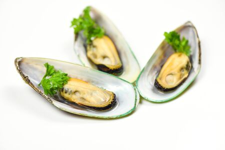 Mussels isolated on white background  Green mussel shell with parsley