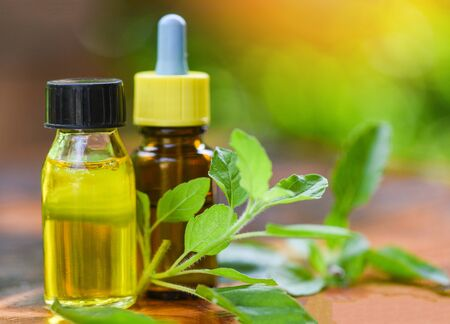 Aromatherapy herbal oil bottles aroma with leaves herbal formulations including and herbs  Holy Basil Essential Oil natural and green background Banco de Imagens