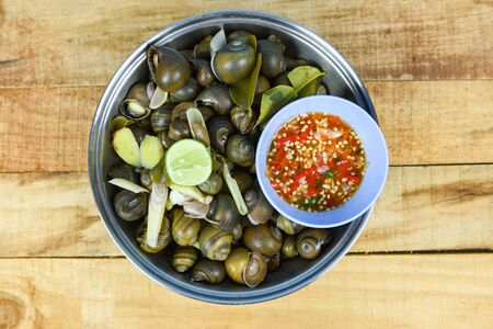 Pila ampullacea shellfish freshwater snail nautilus ammonite with spicy chili sauce Boiled golden apple snail river cooked for Asian food in Thailand Stock Photo - 133824160