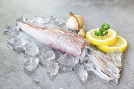 Raw squid on ice with salad spices lemon garlic on white plate background / fresh squids octopus or cuttlefish for cooked food at restaurant or seafood market