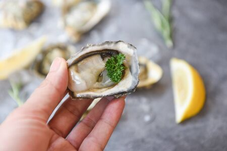 Fresh oysters seafood in hand on a black plate background  Close up oyster shell