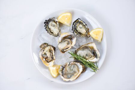 Fresh oysters seafood on white plate background  Open oyster shell with herb spices lemon rosemary served on table and ice healthy sea food raw oyster dinner in the restaurant gourmet food