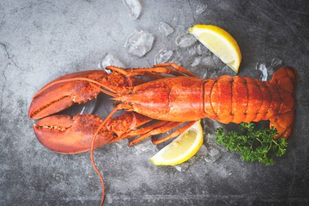 Fresh lobster food on a black plate background / red lobster dinner seafood with herb spices lemon served table and ice in the restaurant gourmet food healthy boiled lobster cooked , top view