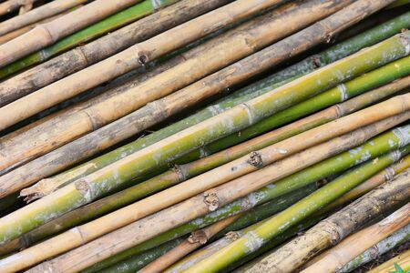 old bamboo wall background / nature wood for fence