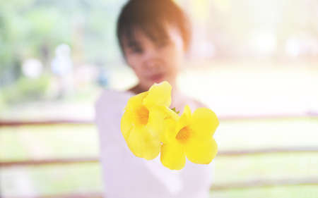 woman give flowers / lady holding flower , beautiful girl with yellow flower on hand Standard-Bild