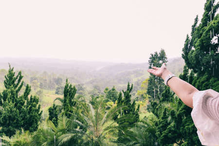 hand catching rain drops on nature green background / Woman hands praying for blessing from god on mountain positive arm energy reborn change rainy season