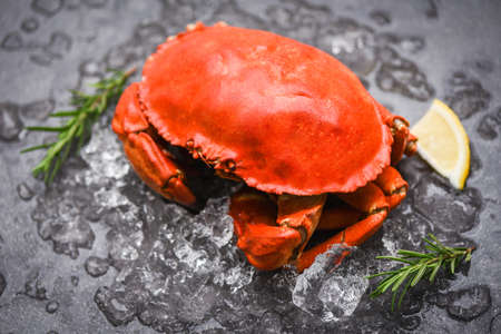 Seafood shellfish Steamed red crab or Boiled stone crab / Fresh crab with ingredients lemon rosemary on  ice Zdjęcie Seryjne