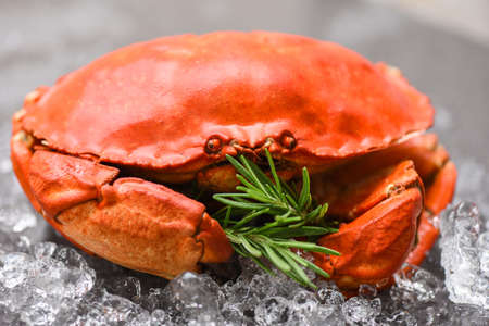 Fresh crab with ingredients lemon rosemary on ice / Seafood shellfish Steamed red crab or Boiled stone crab