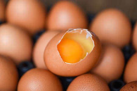 Chicken eggs collect from farm products natural healthy eating concept / Fresh broken egg yolk