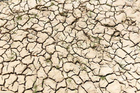 Global warming concept, Cracked soil arid land with dry and cracked ground desert texture background Reklamní fotografie