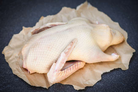 Raw duck ready to cook on dark background, Fresh whole duck