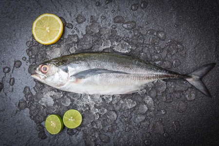 Fish on ice for cooking food in the restaurant, Fresh fish raw torpedo scad with lemon, mackerel scad top view