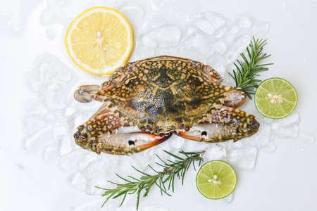 Seafood crab on ice for cooking food in the restaurant, Fresh raw Blue Swimming Crab ocean gourmet with lemon and rosemary