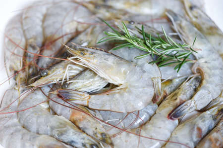 Raw shrimps prawns on background, Fresh shrimp with herbs and spice rosemary
