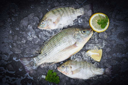 Tilapia fish freshwater for cooking food in the asian restaurant, Fresh raw tilapia from farm on ice market food with herb and spices lemon , Fresh fish top view