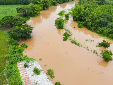 Aerial view river flood forest nature woodland area green tree, Top view river lagoon pond with water flood from above, Bird eye view landscape jungles lake flowing wild water after the rain Zdjęcie Seryjne