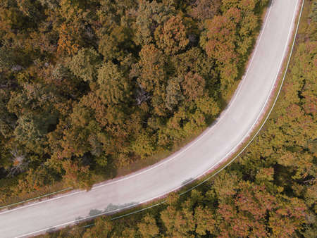 Aerial view car on road forest tree environment forest nature background, Texture of yellow orange tree and dead tree top view forest from above landscape bird eye view pine forest Autumn Orange Rush Stockfoto
