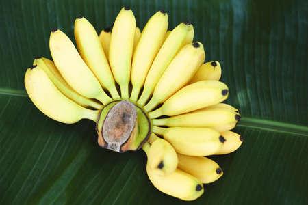 Banana tropical fruit on banana leaf background, fresh ripe banana Zdjęcie Seryjne
