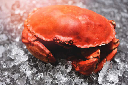 Seafood shellfish Steamed red crab or Boiled stone crab, Fresh crab on ice